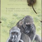 Robin-Huffman-CARE-sign-baboon