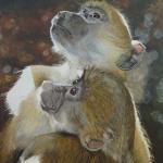 Robin-Huffman-chacma-baboon-painting-CARE-Samantha-Dewhirst