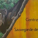 Robin-Huffman-welcome-sign-Sanaga-Yong-chimp-sanctuary-Cameroon
