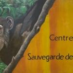 Robin-Huffman-welcome-sign-Sanaga-Yong-chimp-sanctuary-Cameroon
